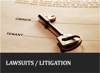 Lawsuits / Litigation